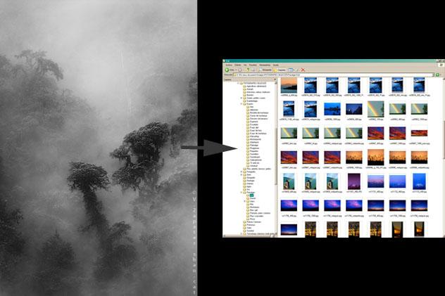 ¿Cómo encontrar una fotografía en la computadora? How can I find a photography in my computer?