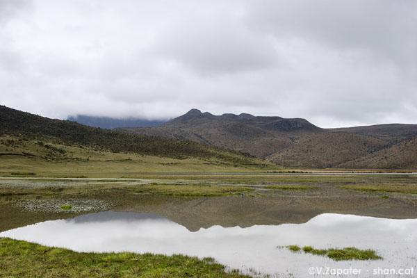 Laguna de Limpiopungo. Limpiopungo Lagoon.