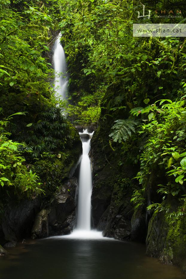 Río y cascada en la Reserva Itapoa. Esmeraldas, Ecuador. River and fall in Itapoa Reserve. Esmeraldas, Ecuador